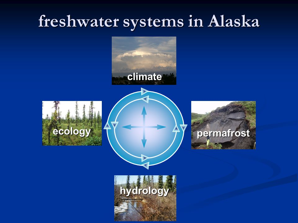 freshwater systems in Alaska ecology climate permafrost hydrology