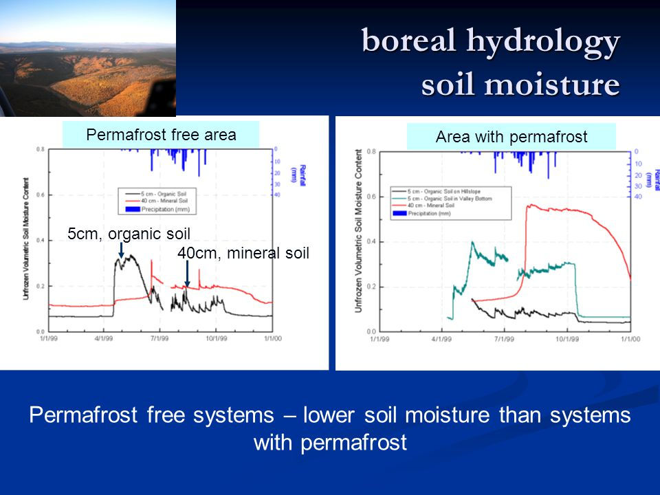 boreal hydrology soil moisture Permafrost free systems – lower soil moisture than systems with permafrost Permafrost free area Area with permafrost 5cm, organic soil 40cm, mineral soil