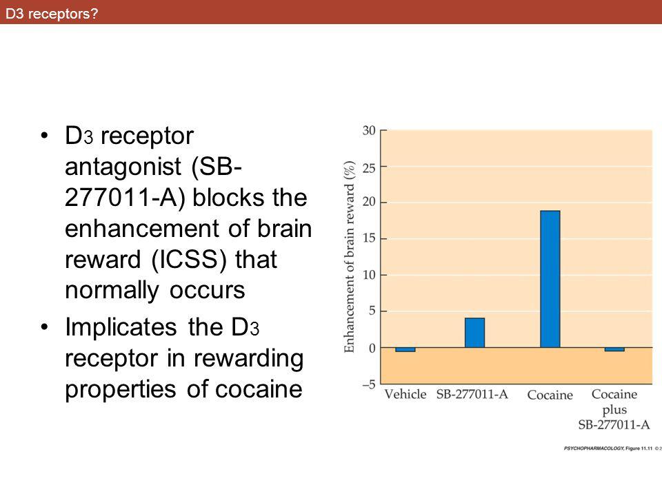 D3 receptors.
