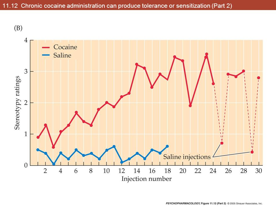 11.12 Chronic cocaine administration can produce tolerance or sensitization (Part 2)