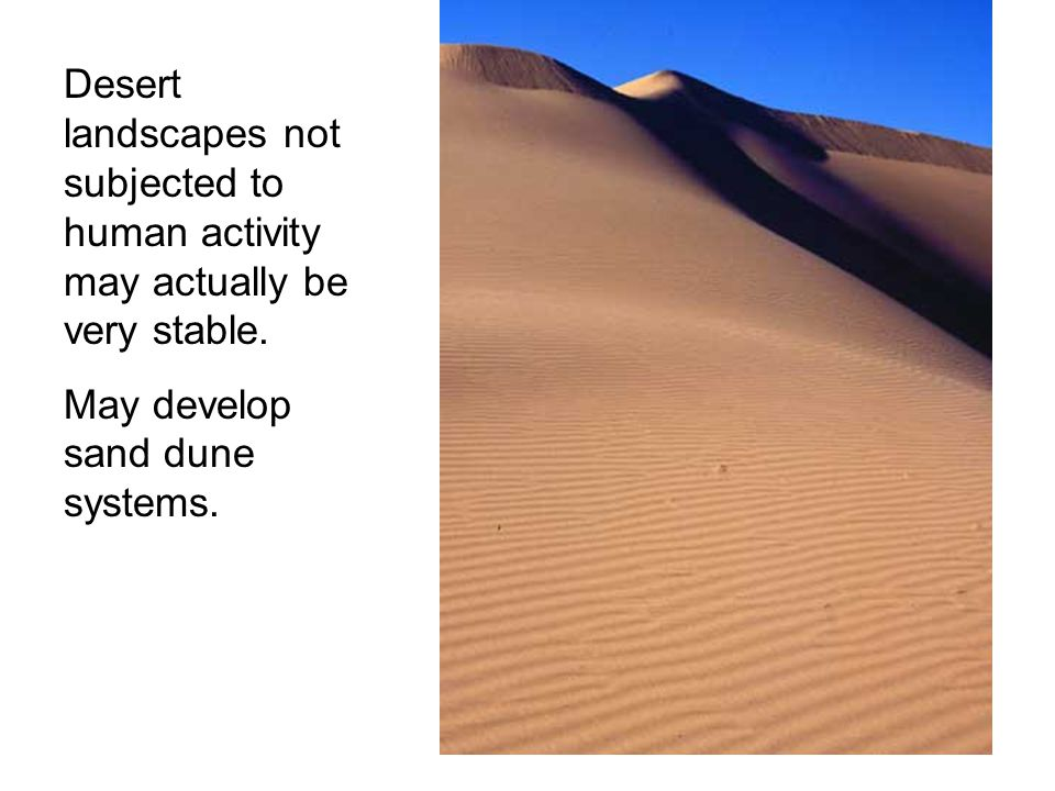 Desert landscapes not subjected to human activity may actually be very stable.