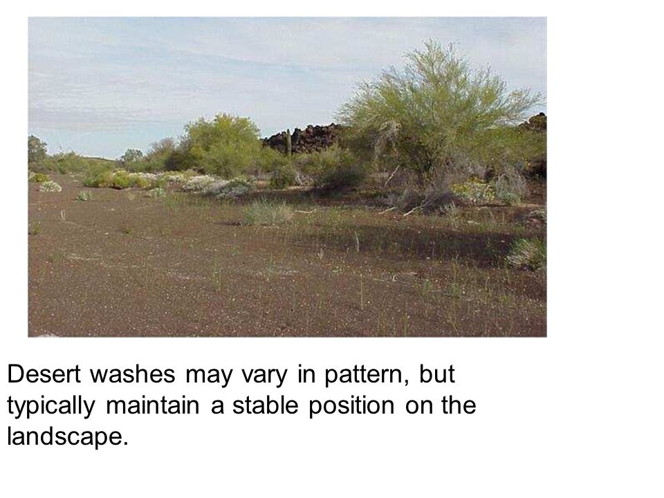 Desert washes may vary in pattern, but typically maintain a stable position on the landscape.