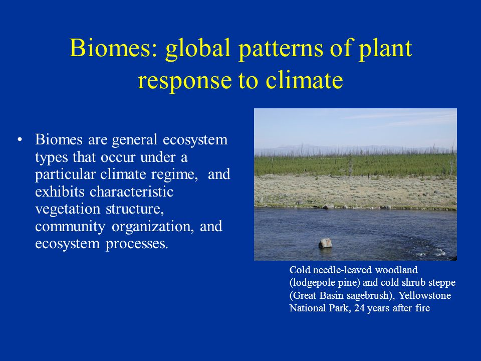 Biomes: global patterns of plant response to climate Biomes are general ecosystem types that occur under a particular climate regime, and exhibits characteristic vegetation structure, community organization, and ecosystem processes.