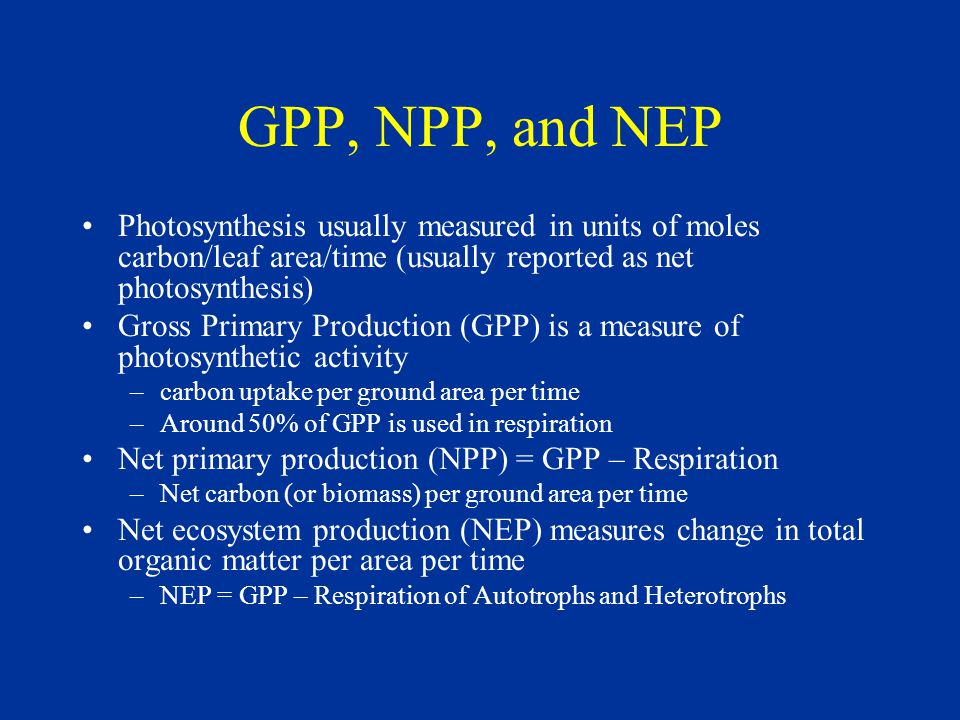 GPP, NPP, and NEP Photosynthesis usually measured in units of moles carbon/leaf area/time (usually reported as net photosynthesis) Gross Primary Production (GPP) is a measure of photosynthetic activity –carbon uptake per ground area per time –Around 50% of GPP is used in respiration Net primary production (NPP) = GPP – Respiration –Net carbon (or biomass) per ground area per time Net ecosystem production (NEP) measures change in total organic matter per area per time –NEP = GPP – Respiration of Autotrophs and Heterotrophs