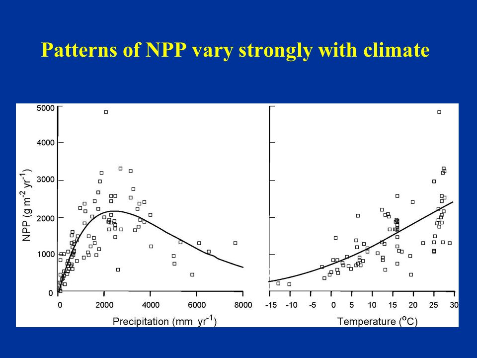 Patterns of NPP vary strongly with climate