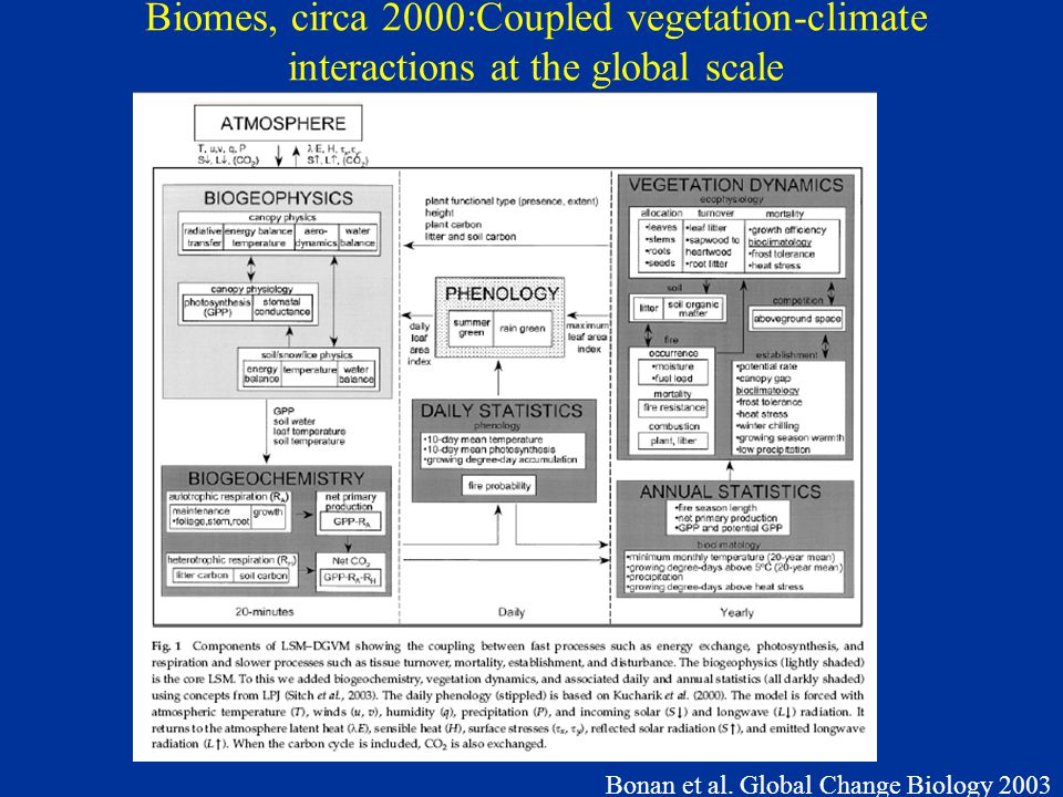 Bonan et al. Global Change Biology 2003 Biomes, circa 2000:Coupled vegetation-climate interactions at the global scale