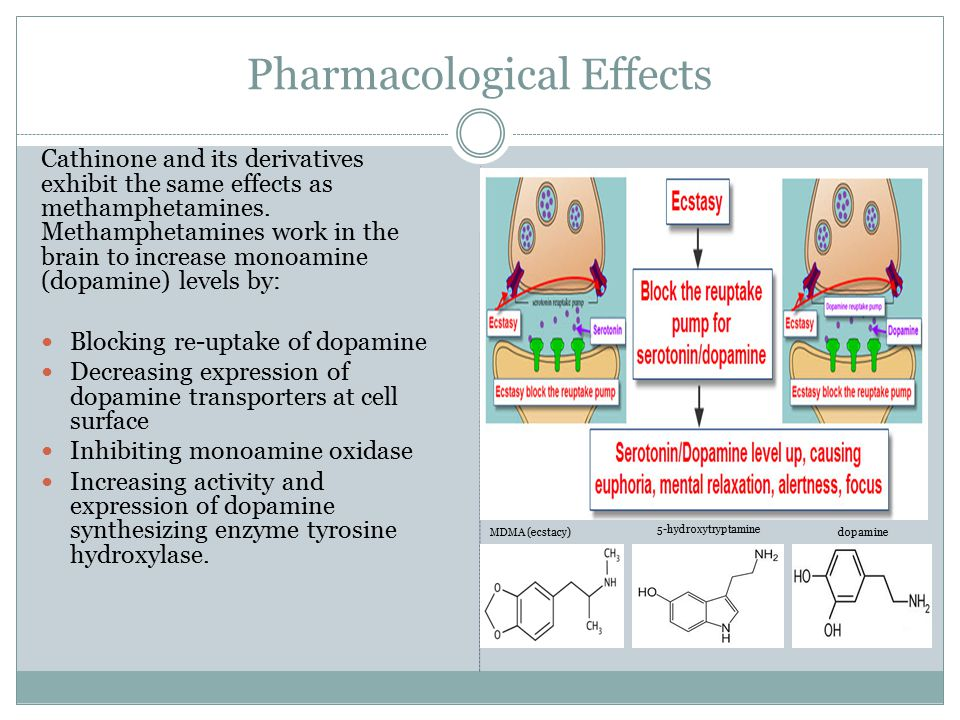 Pharmacological Effects Cathinone and its derivatives exhibit the same effects as methamphetamines. Methamphetamines work in the brain to increase mon