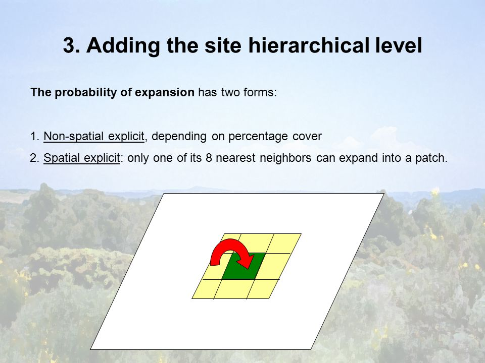 3. Adding the site hierarchical level The probability of expansion has two forms: 1.