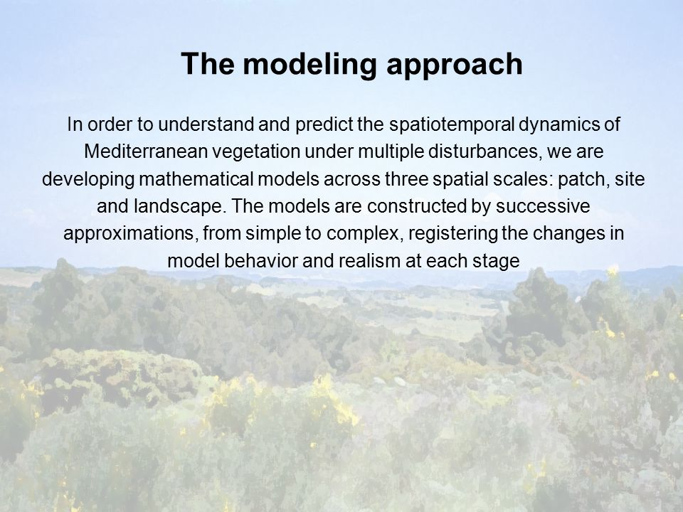 The modeling approach In order to understand and predict the spatiotemporal dynamics of Mediterranean vegetation under multiple disturbances, we are developing mathematical models across three spatial scales: patch, site and landscape.