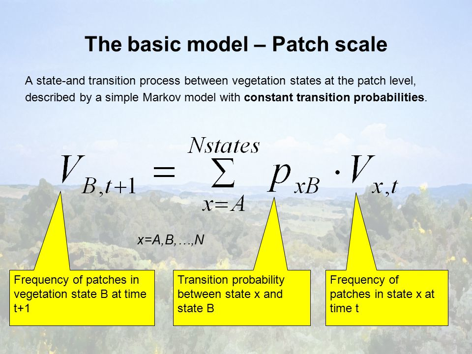 The basic model – Patch scale A state-and transition process between vegetation states at the patch level, described by a simple Markov model with constant transition probabilities.