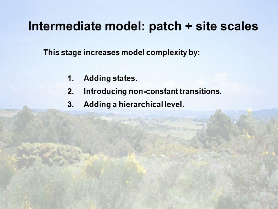 Intermediate model: patch + site scales This stage increases model complexity by: 1.Adding states.