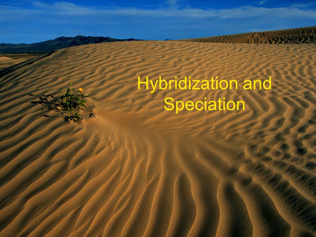 Hybridization and Speciation