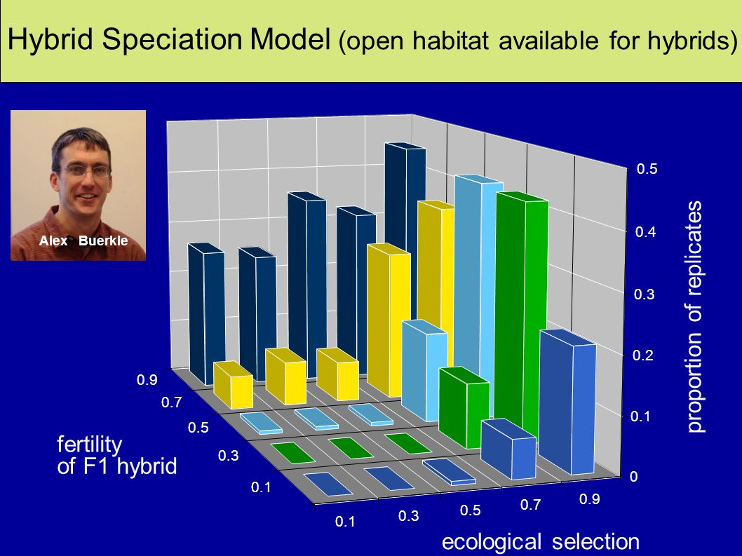 Frequency of Hybrid Speciation (open habitat available for hybrids) Fertility controlled by two underdominant loci Ecological performance controlled by two loci with additive effects Three different habitats and ecological selection occurred at seedling stage Heredity (2000) 84, 441–451 0.1 0.3 0.5 0.7 0.9 0.1 0.3 0.5 0.7 0.9 0 0.1 0.2 0.3 0.4 0.5 proportion of replicates ecological selection fertility of F1 hybrid Hybrid speciation AlexBuerkle Hybrid Speciation Model (open habitat available for hybrids)
