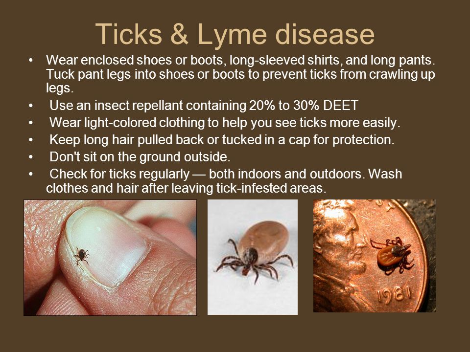Ticks & Lyme disease Wear enclosed shoes or boots, long-sleeved shirts, and long pants.