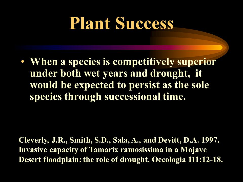Plant Success When a species is competitively superior under both wet years and drought, it would be expected to persist as the sole species through successional time.
