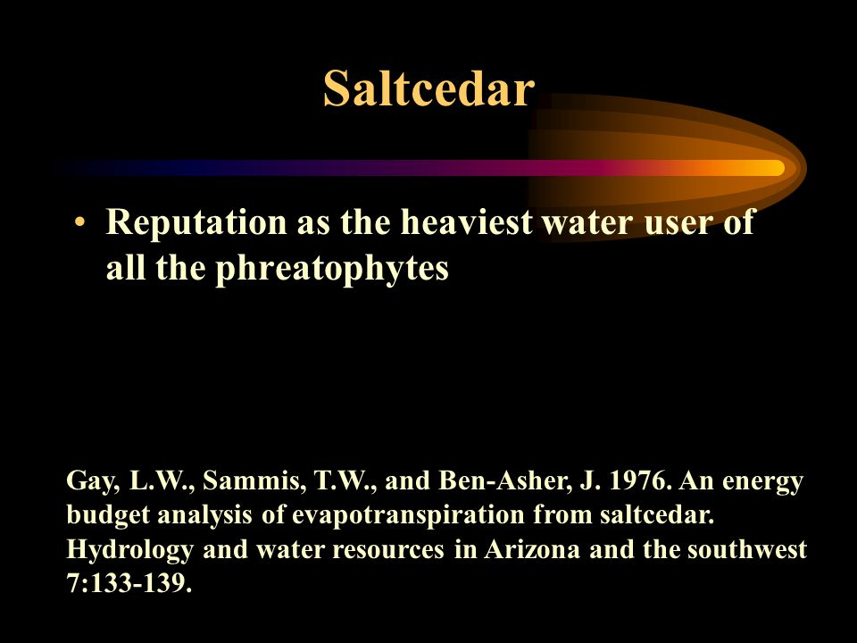 Saltcedar Reputation as the heaviest water user of all the phreatophytes Gay, L.W., Sammis, T.W., and Ben-Asher, J.