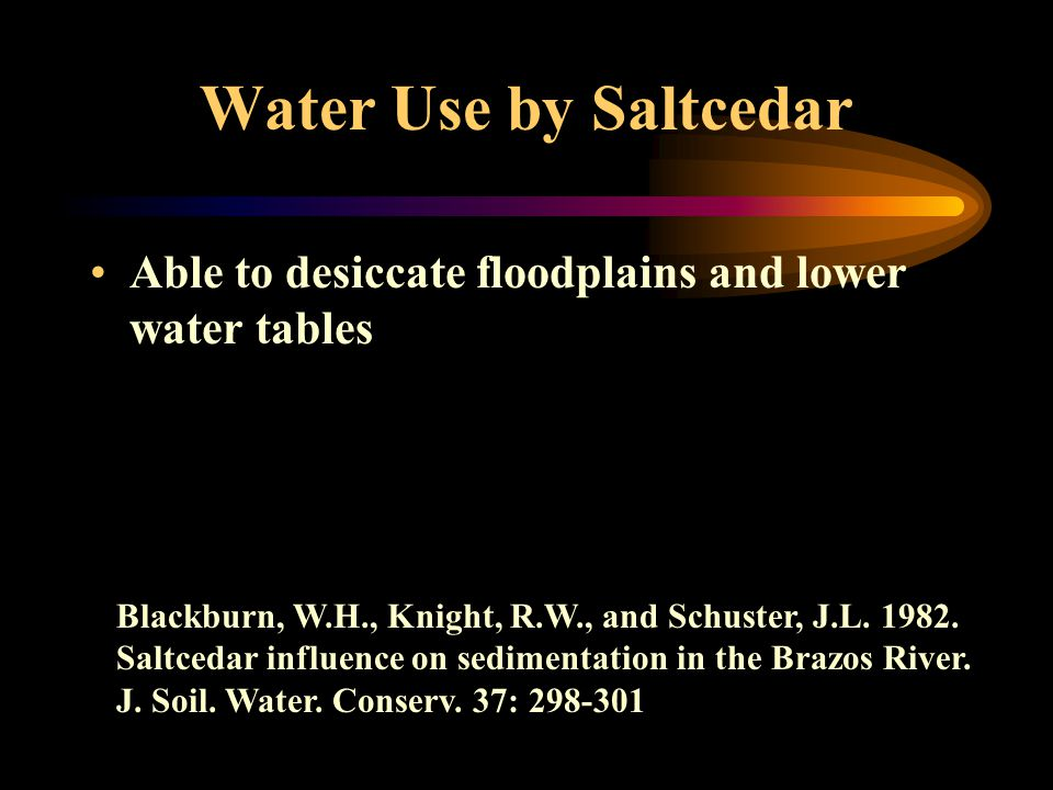 Water Use by Saltcedar Able to desiccate floodplains and lower water tables Blackburn, W.H., Knight, R.W., and Schuster, J.L.