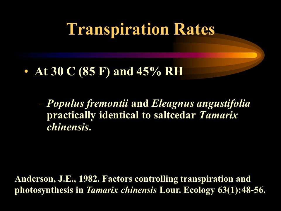 Transpiration Rates At 30 C (85 F) and 45% RH –Populus fremontii and Eleagnus angustifolia practically identical to saltcedar Tamarix chinensis. Ander
