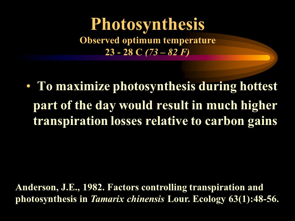 Photosynthesis Observed optimum temperature 23 - 28 C (73 – 82 F) To maximize photosynthesis during hottest part of the day would result in much higher transpiration losses relative to carbon gains Anderson, J.E., 1982.