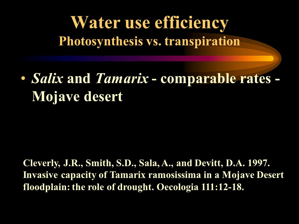 Water use efficiency Photosynthesis vs. transpiration Salix and Tamarix - comparable rates - Mojave desert Cleverly, J.R., Smith, S.D., Sala, A., and