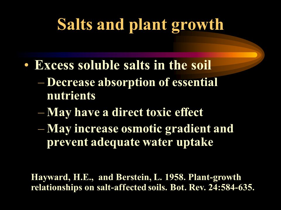 Salts and plant growth Excess soluble salts in the soil –Decrease absorption of essential nutrients –May have a direct toxic effect –May increase osmo