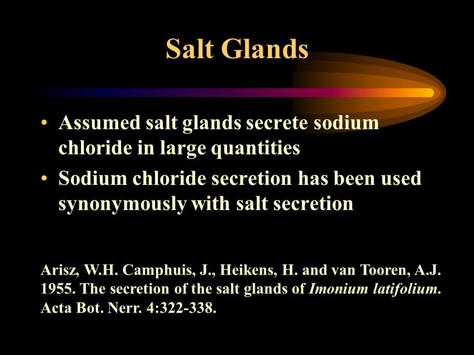 Salt Glands Assumed salt glands secrete sodium chloride in large quantities Sodium chloride secretion has been used synonymously with salt secretion A