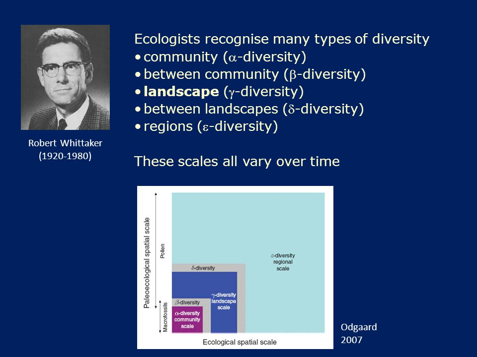 Ecologists recognise many types of diversity community (-diversity) between community (-diversity) landscape (-diversity) between landscapes (-diversity) regions (-diversity) These scales all vary over time Odgaard 2007 Robert Whittaker (1920-1980)