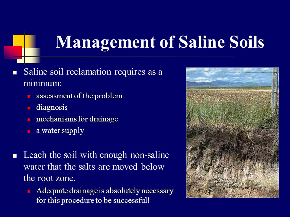 Management of Saline Soils Saline soil reclamation requires as a minimum: assessment of the problem diagnosis mechanisms for drainage a water supply Leach the soil with enough non-saline water that the salts are moved below the root zone.
