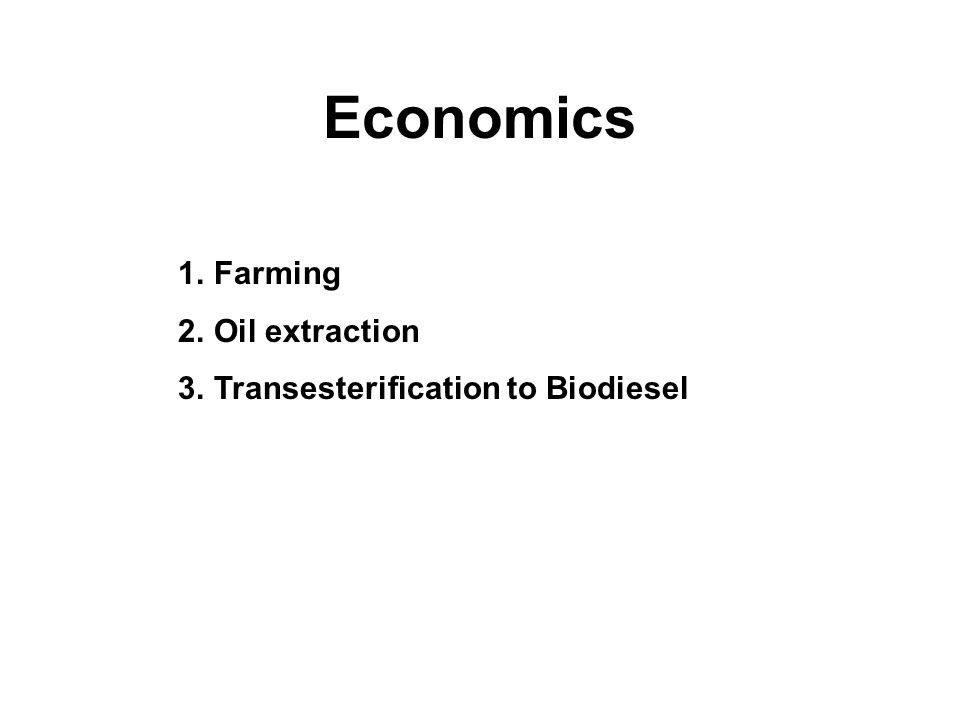 Economics 1.Farming 2.Oil extraction 3.Transesterification to Biodiesel