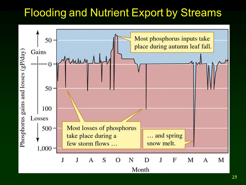 25 Flooding and Nutrient Export by Streams
