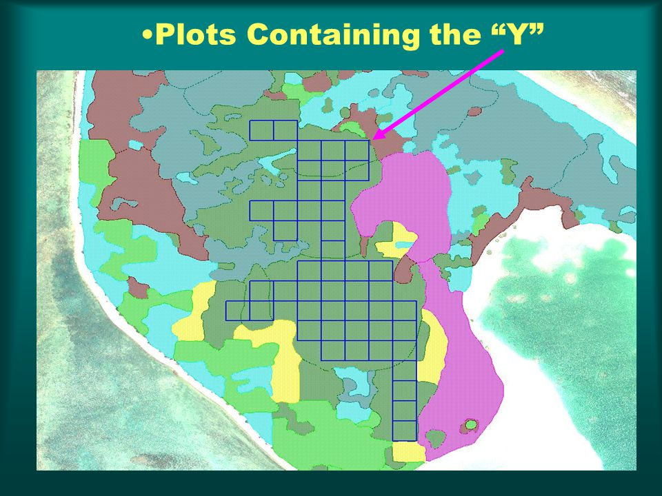 Plots Containing the Y
