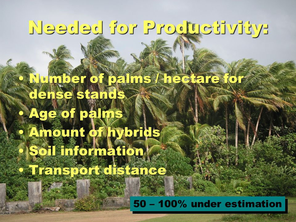 Needed for Productivity: Number of palms / hectare for dense standsNumber of palms / hectare for dense stands Age of palmsAge of palms Amount of hybridsAmount of hybrids Soil informationSoil information Transport distanceTransport distance 50 – 100% under estimation