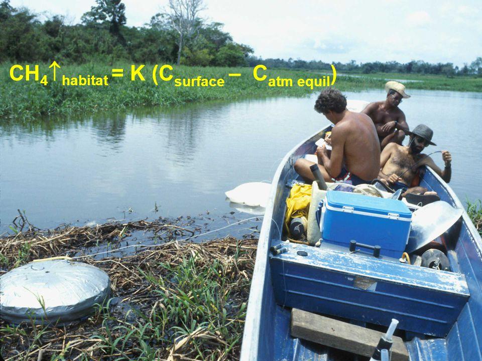 CH 4  habitat = K (C surface – C atm equil )