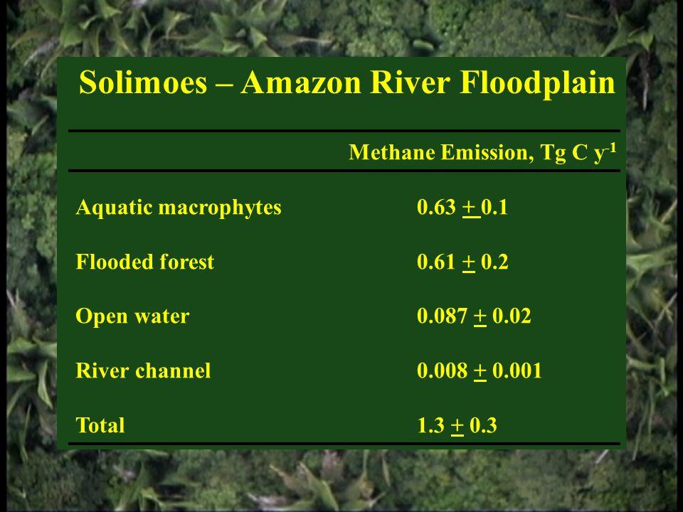 Solimoes – Amazon River Floodplain Methane Emission, Tg C y -1 Aquatic macrophytes0.63 + 0.1 Flooded forest0.61 + 0.2 Open water0.087 + 0.02 River cha