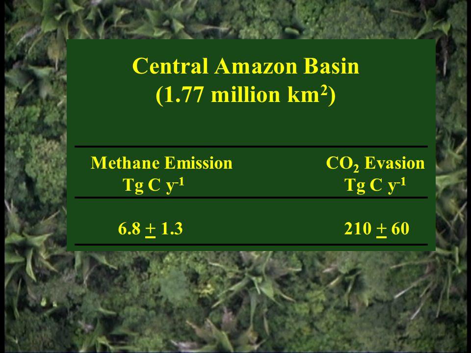 Central Amazon Basin (1.77 million km 2 ) Methane EmissionCO 2 Evasion Tg C y -1 Tg C y -1 6.8 + 1.3 210 + 60