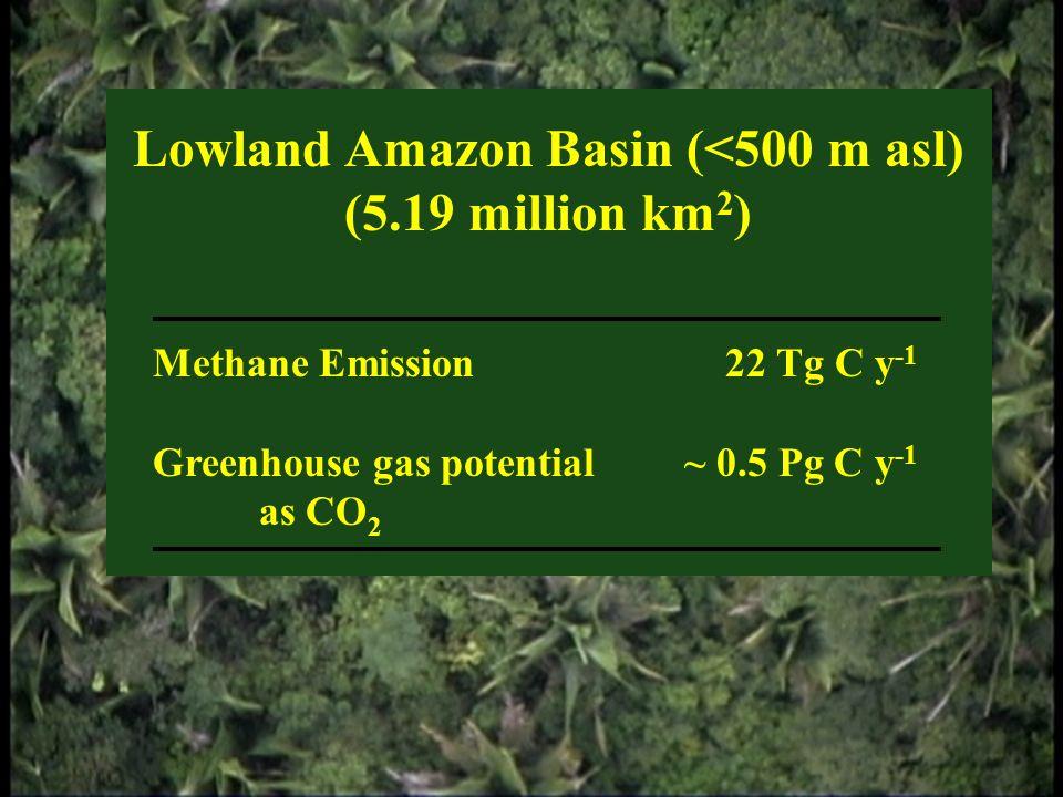 Lowland Amazon Basin (<500 m asl) (5.19 million km 2 ) Methane Emission 22 Tg C y -1 Greenhouse gas potential~ 0.5 Pg C y -1 as CO 2