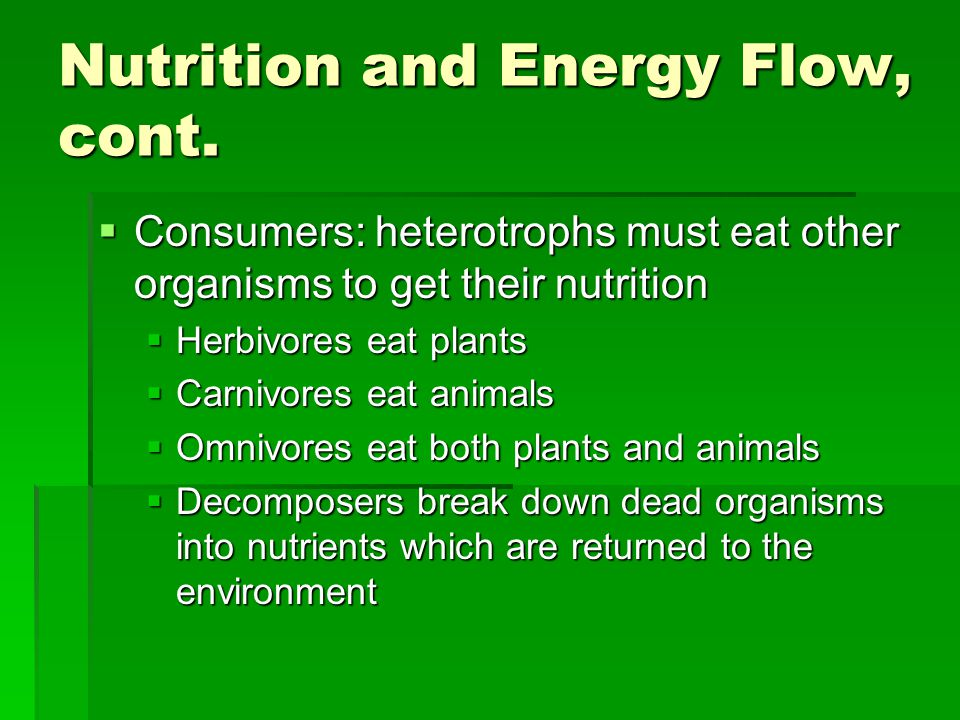 Nutrition and Energy Flow, cont.  Consumers: heterotrophs must eat other organisms to get their nutrition  Herbivores eat plants  Carnivores eat an