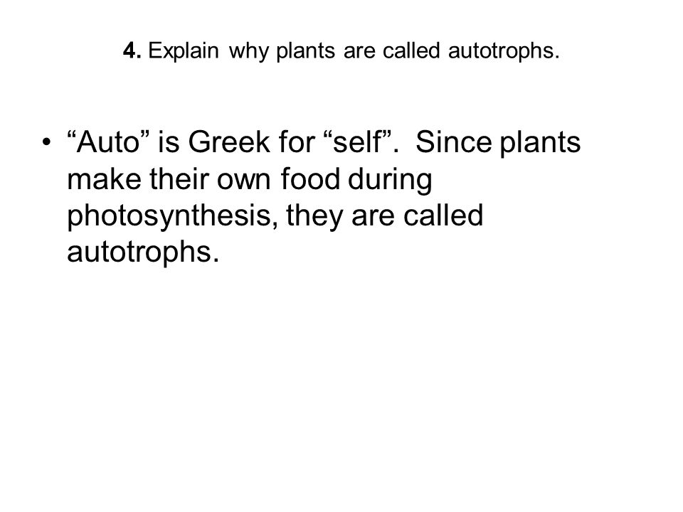 """4. Explain why plants are called autotrophs. """"Auto"""" is Greek for """"self"""". Since plants make their own food during photosynthesis, they are called autot"""