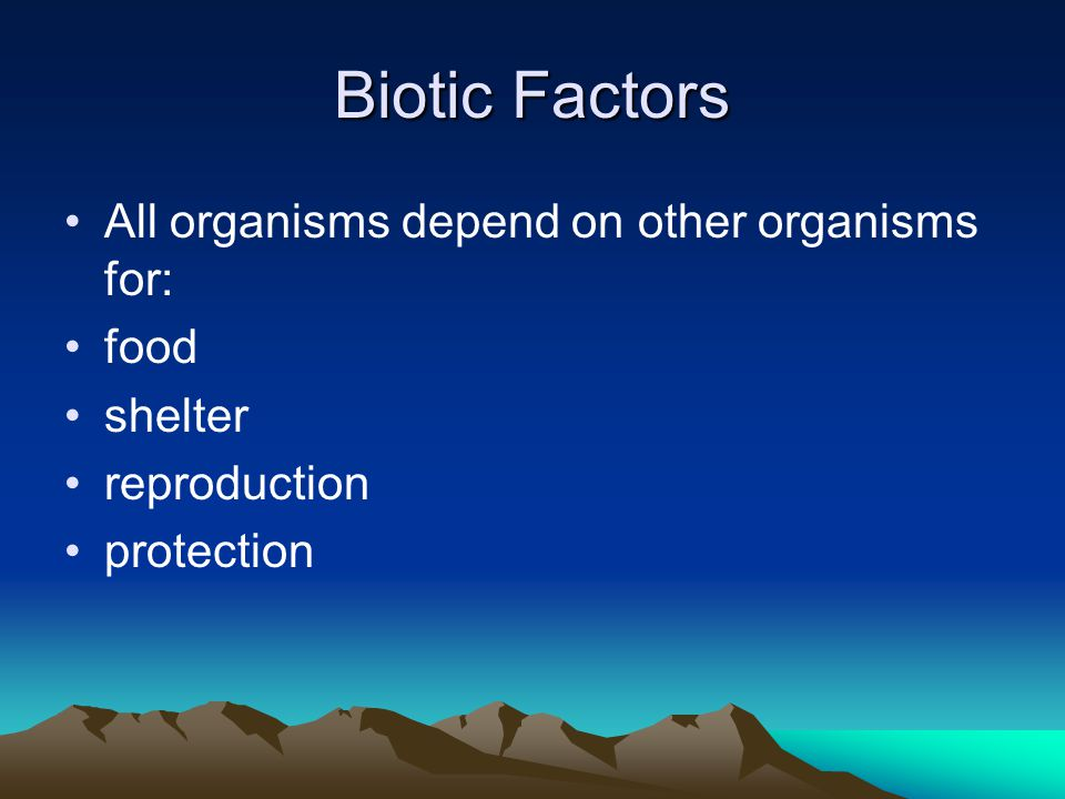 Levels of Organization A species is a group of similar organisms which can successfully interbreed.