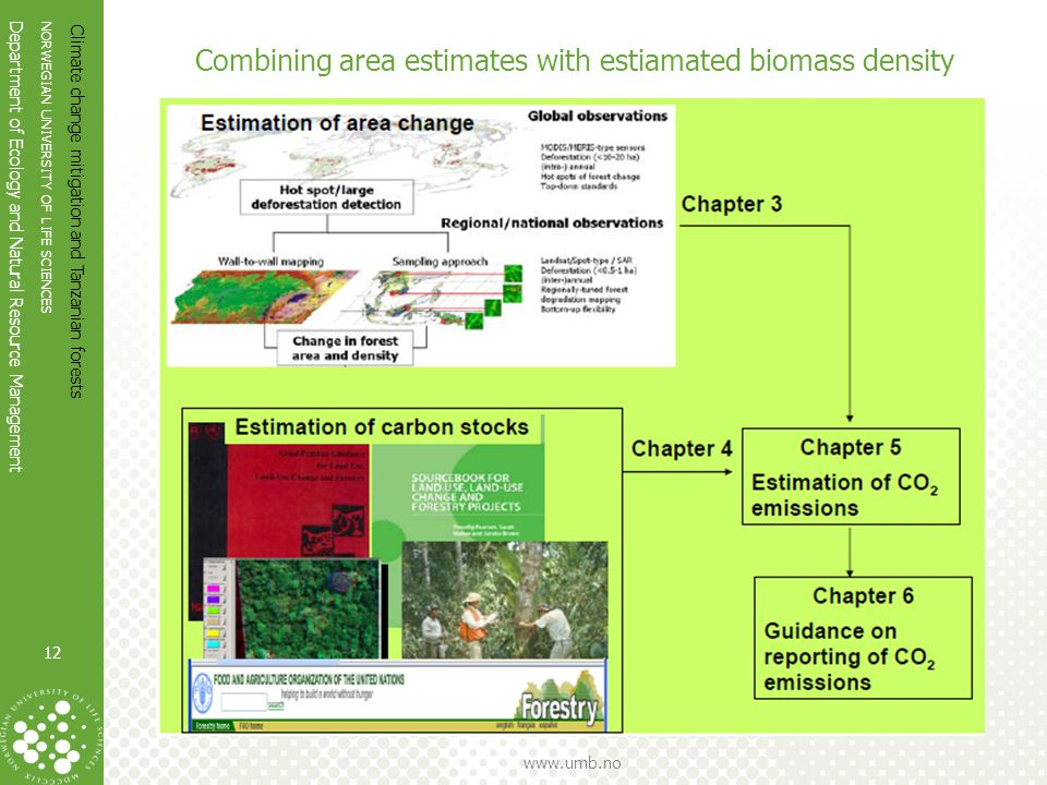 NORWEGIAN UNIVERSITY OF LIFE SCIENCES Department of Ecology and Natural Resource Management www.umb.no Combining area estimates with estiamated biomass density Climate change mitigation and Tanzanian forests 12