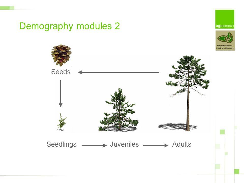 SeedlingsJuvenilesAdults Demography modules 2 Seeds