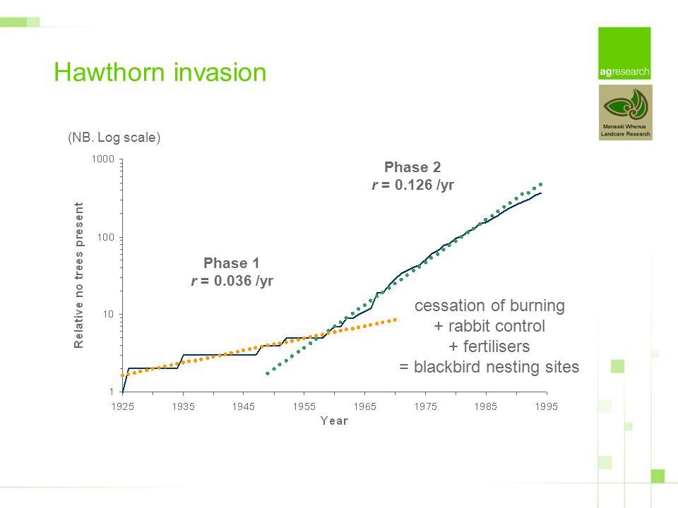Phase 1 r = 0.036 /yr Phase 2 r = 0.126 /yr Hawthorn invasion cessation of burning + rabbit control + fertilisers = blackbird nesting sites (NB.
