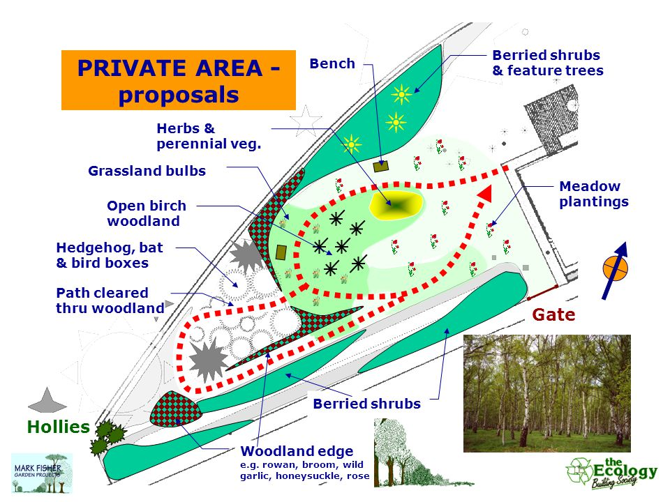 PRIVATE AREA - proposals Berried shrubs & feature trees Berried shrubs Gate Meadow plantings Bench Grassland bulbs Woodland edge e.g. rowan, broom, wi