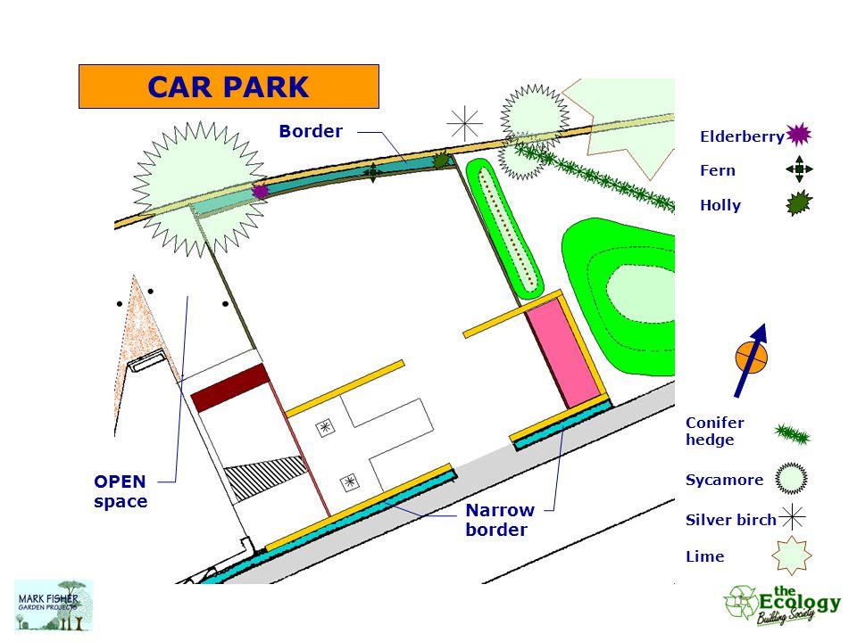 CAR PARK Conifer hedge Sycamore Silver birch Lime Narrow border Elderberry Fern Holly Border OPEN space