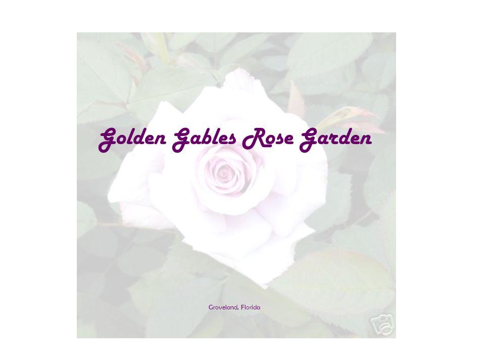 Golden Gables Rose Garden Groveland, Florida