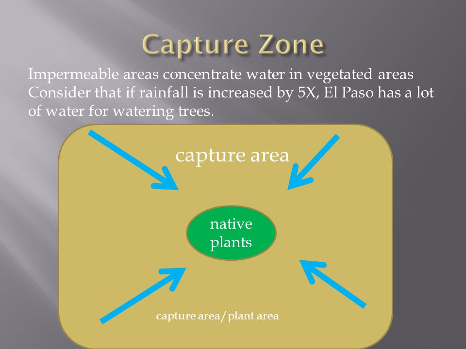 native plants Impermeable areas concentrate water in vegetated areas Consider that if rainfall is increased by 5X, El Paso has a lot of water for watering trees.