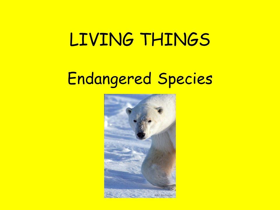 LIVING THINGS Endangered Species
