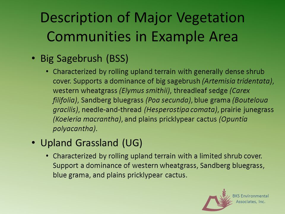 Description of Major Vegetation Communities in Example Area Big Sagebrush (BSS) Characterized by rolling upland terrain with generally dense shrub cover.