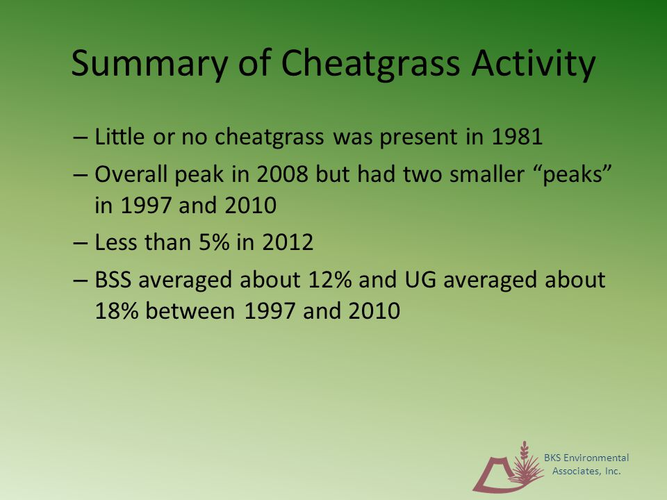 Summary of Cheatgrass Activity – Little or no cheatgrass was present in 1981 – Overall peak in 2008 but had two smaller peaks in 1997 and 2010 – Less than 5% in 2012 – BSS averaged about 12% and UG averaged about 18% between 1997 and 2010 BKS Environmental Associates, Inc.