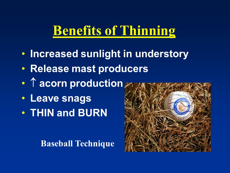 Benefits of Thinning Increased sunlight in understory Release mast producers  acorn production Leave snags THIN and BURN Baseball Technique